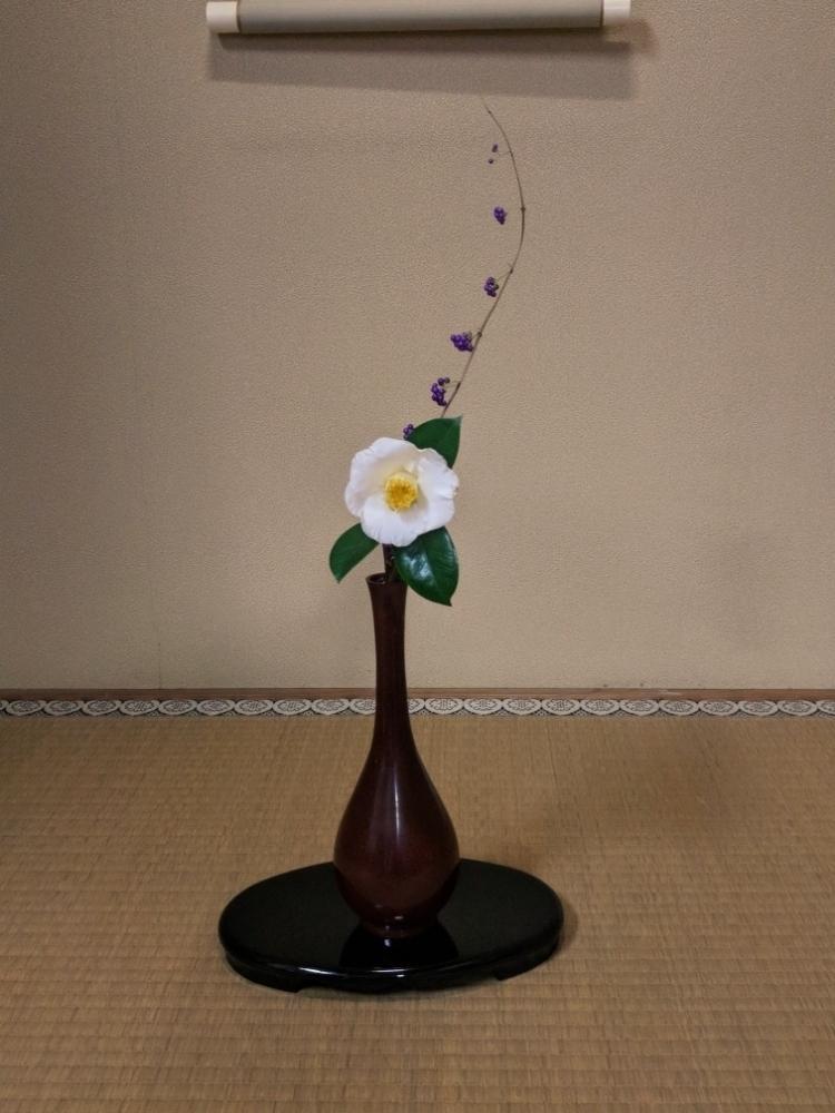 ムラサキシキブの投稿画像 by とりさん|ツバキと茶花とツバキの