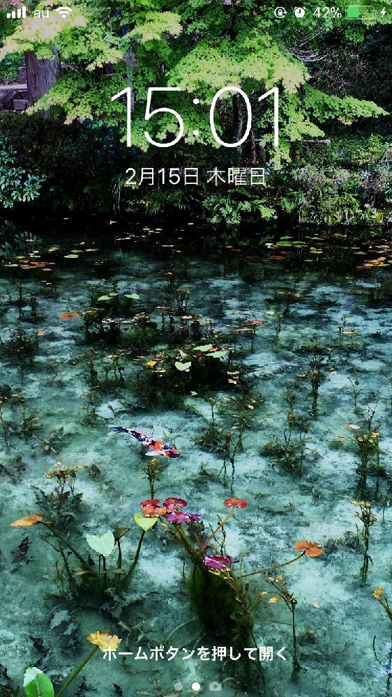 壁紙祭りの投稿画像 By Leonさんモネの池と睡蓮の花 2018月2月15日