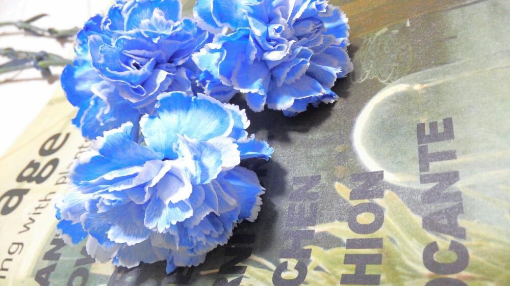花束 を ロイヤル ブルー に