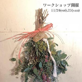 Royal Gardener's Clubさんの画像