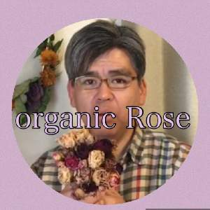 How to grow Organic Rose