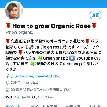 How to grow Organic Roseさんの画像
